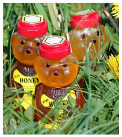 Honey-filled Bears from The Wiltshire Beekeeper
